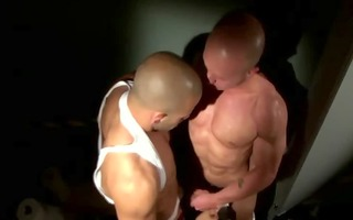 gay schlong wishes to be fucked after his blowjob